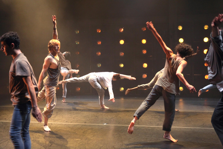 Professional Dancer Career